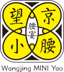 Wang Jing Mini Yao